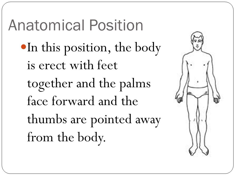 Angular Movements Abduction This is movement of a limb away from the midline of the body.