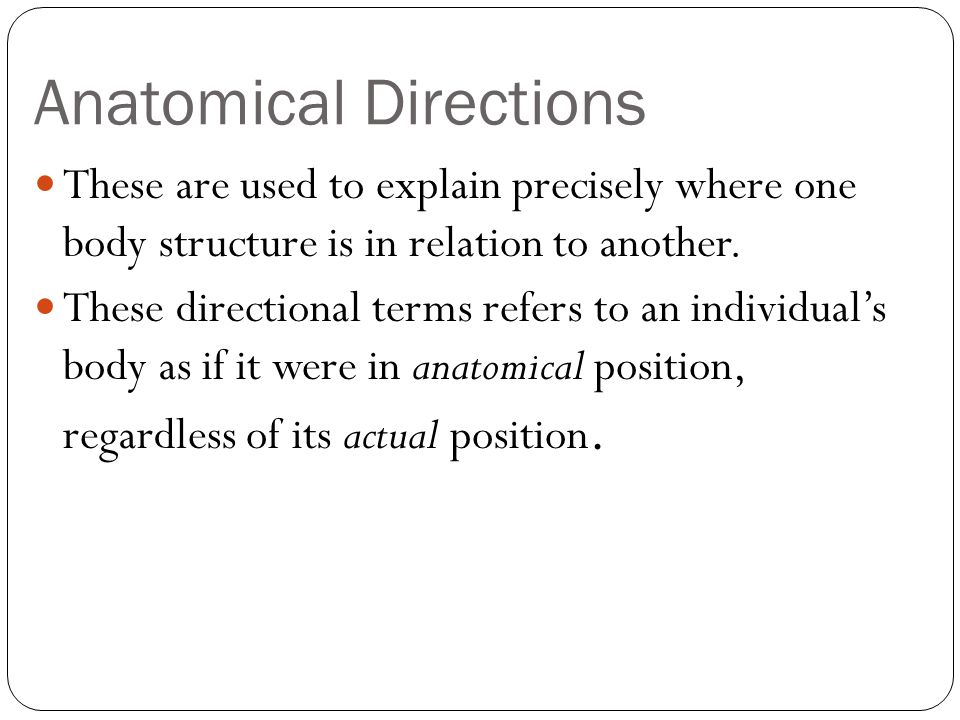 Anatomical Directions Superior (cranial) Toward the head end or upper part of a structure or the body; Above