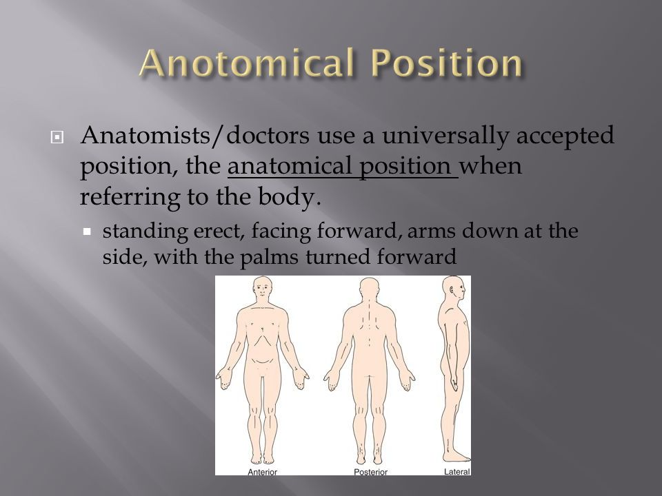  Anatomists/doctors use a universally accepted position, the anatomical position when referring to the body.  standing erect, facing forward, arms d