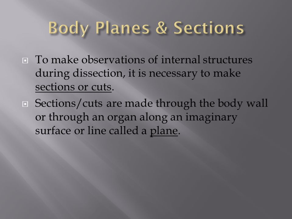  To make observations of internal structures during dissection, it is necessary to make sections or cuts.  Sections/cuts are made through the body w