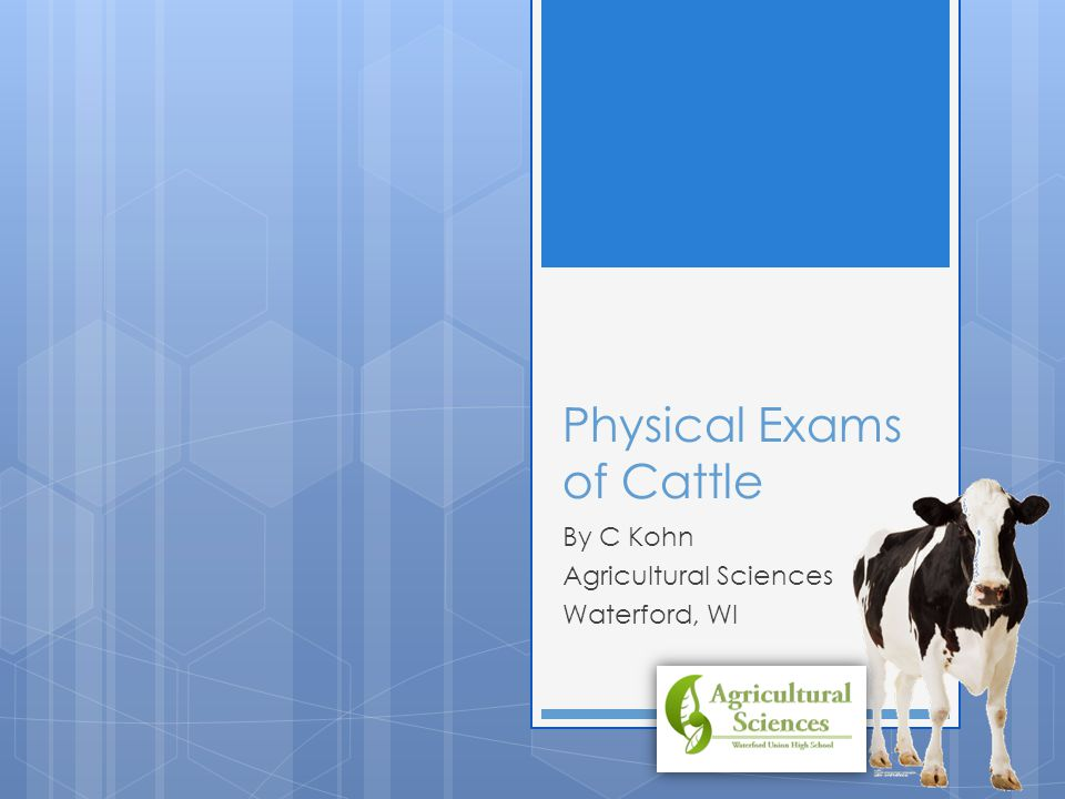 Physical Exams of Cattle By C Kohn Agricultural Sciences Waterford, WI