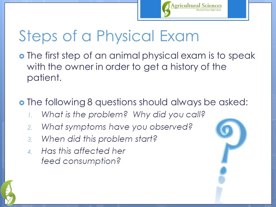 Steps of a Physical Exam  The first step of an animal physical exam is to speak with the owner in order to get a history of the patient.