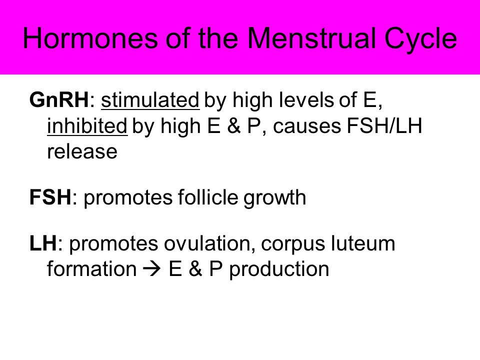 Hormones of the Menstrual Cycle GnRH: stimulated by high levels of E, inhibited by high E & P, causes FSH/LH release FSH: promotes follicle growth LH: