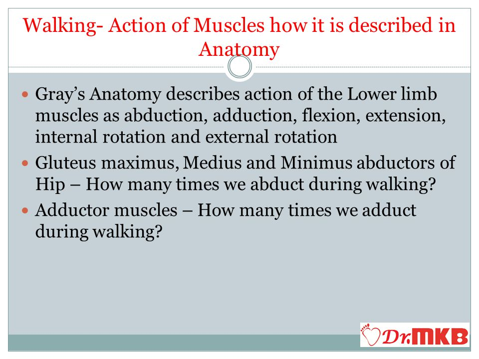 Walking Theory Questions Please Thank you drpvmkm@gmail.com