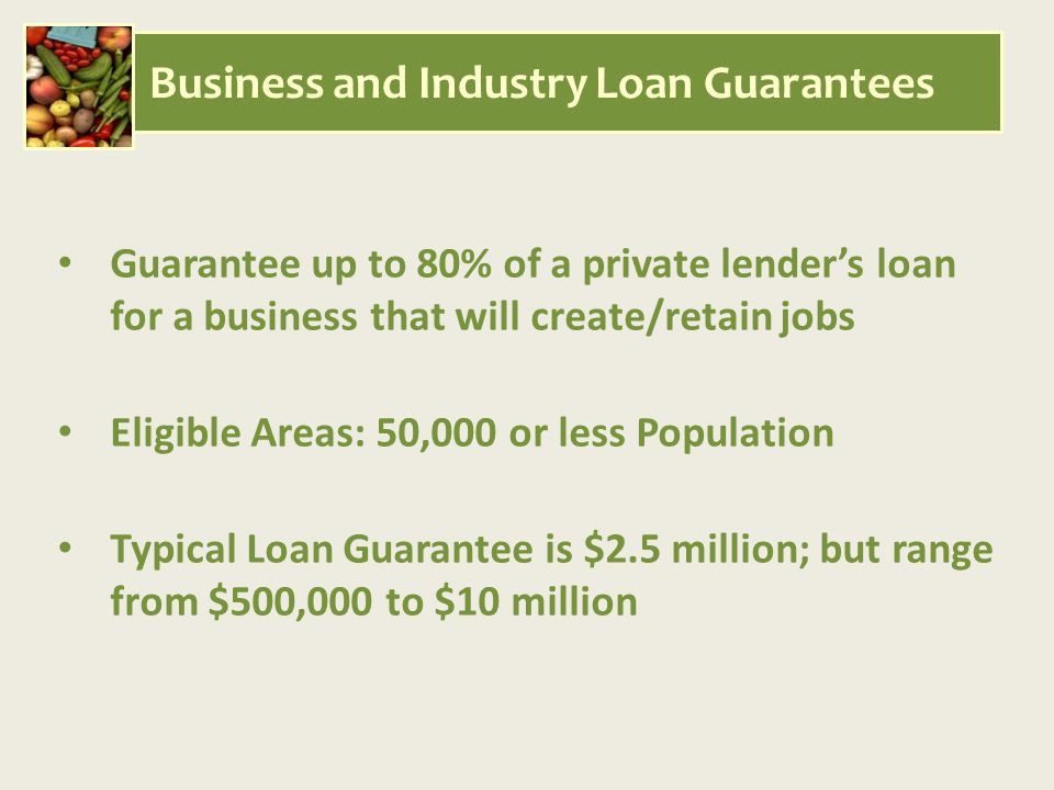 Guarantee up to 80% of a private lender's loan for a business that will create/retain jobs Eligible Areas: 50,000 or less Population Typical Loan Guarantee is $2.5 million; but range from $500,000 to $10 million Business and Industry Loan Guarantees