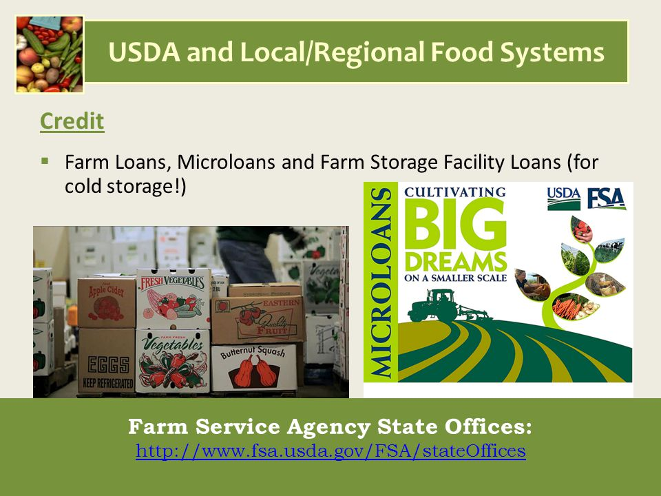 USDA and Local/Regional Food Systems Credit  Farm Loans, Microloans and Farm Storage Facility Loans (for cold storage!) Farm Service Agency State Offices: http://www.fsa.usda.gov/FSA/stateOffices Farm Service Agency State Offices: http://www.fsa.usda.gov/FSA/stateOffices