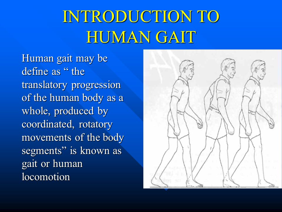 "INTRODUCTION TO HUMAN GAIT Human gait may be define as "" the translatory progression of the human body as a whole, produced by coordinated, rotatory m"
