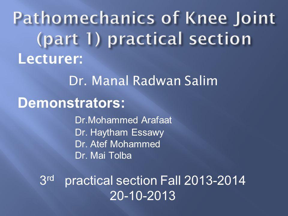 Lecturer: Dr. Manal Radwan Salim Demonstrators: Dr.Mohammed Arafaat Dr. Haytham Essawy Dr. Atef Mohammed Dr. Mai Tolba 3 rd practical section Fall 201