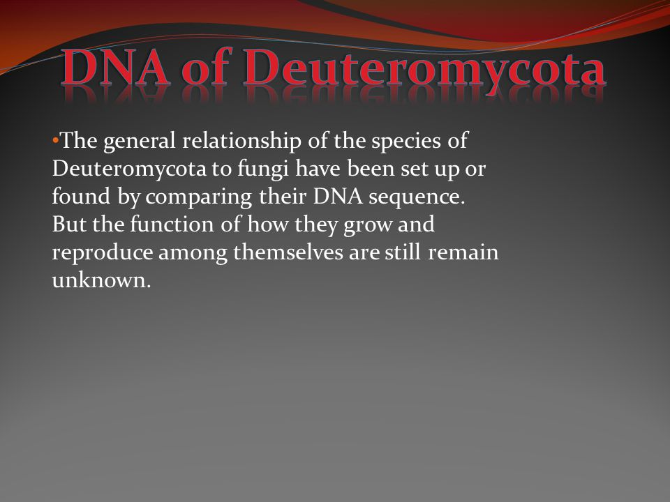 The general relationship of the species of Deuteromycota to fungi have been set up or found by comparing their DNA sequence. But the function of how t