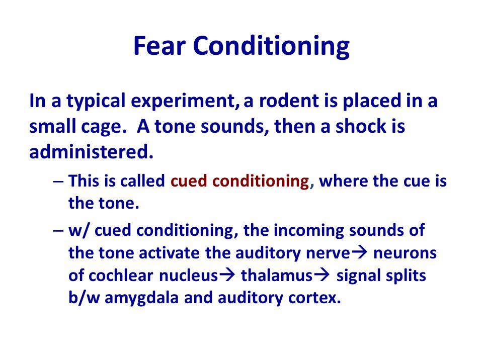 Fear Conditioning In a typical experiment, a rodent is placed in a small cage. A tone sounds, then a shock is administered. – This is called cued cond