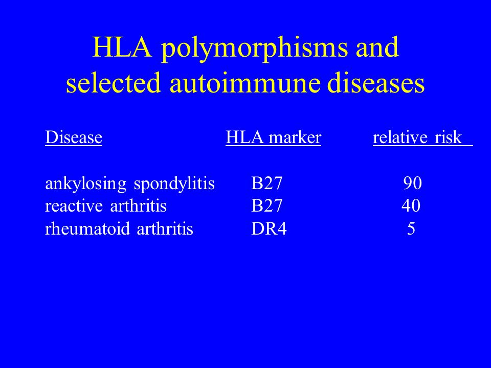 HLA polymorphisms and selected autoimmune diseases Disease HLA marker relative risk ankylosing spondylitis B27 90 reactive arthritis B27 40 rheumatoid