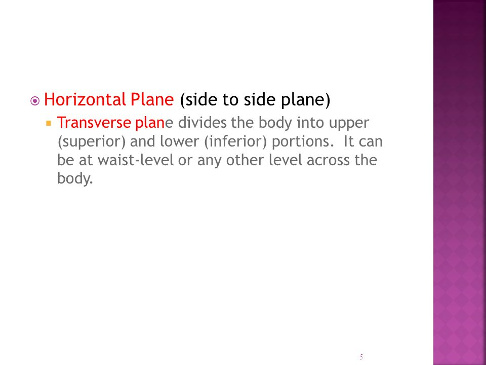  Horizontal Plane (side to side plane)  Transverse plane divides the body into upper (superior) and lower (inferior) portions. It can be at waist-le