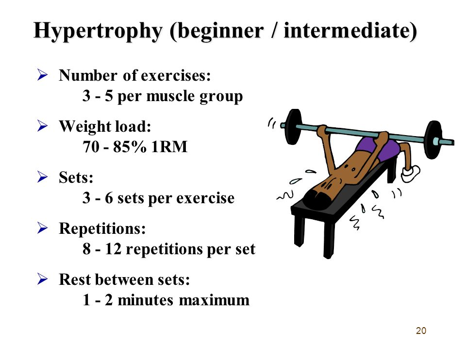 20 Hypertrophy (beginner / intermediate)  Number of exercises: 3 - 5 per muscle group  Weight load: 70 - 85% 1RM  Sets: 3 - 6 sets per exercise  Repetitions: 8 - 12 repetitions per set  Rest between sets: 1 - 2 minutes maximum
