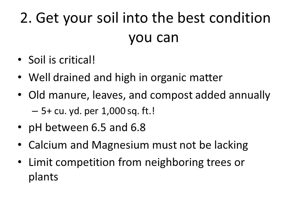 2. Get your soil into the best condition you can Soil is critical.