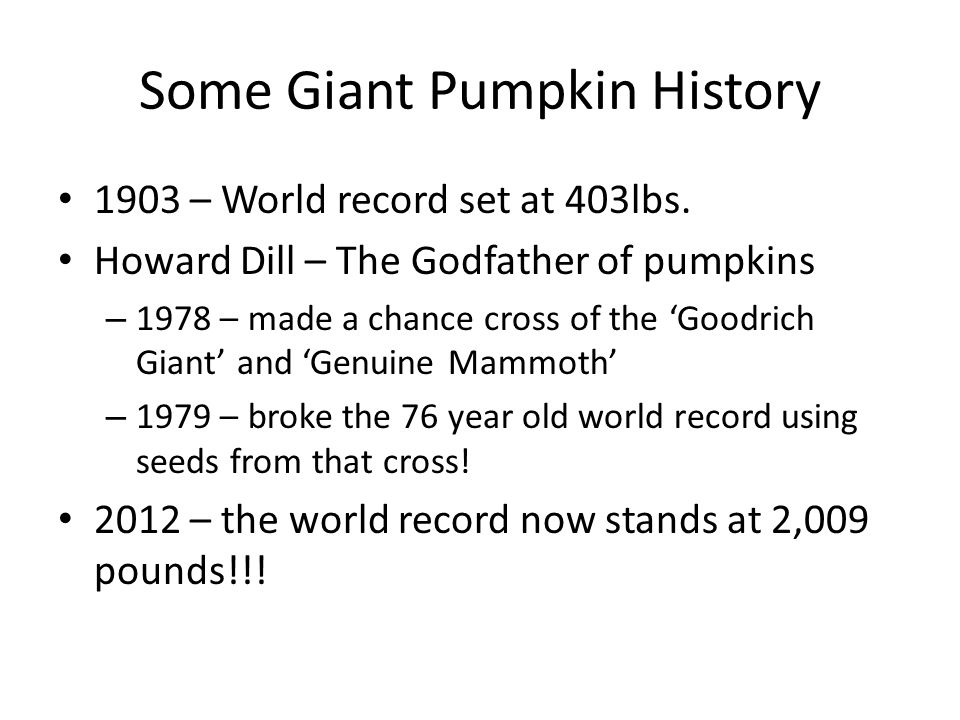 Some Giant Pumpkin History 1903 – World record set at 403lbs.