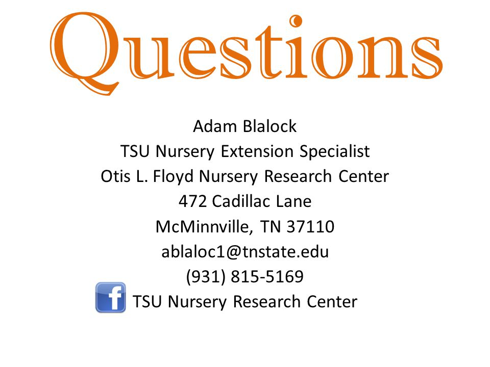 Questions Adam Blalock TSU Nursery Extension Specialist Otis L.