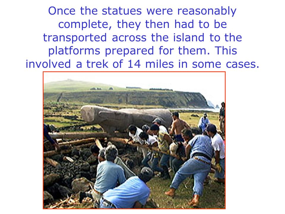 Once the statues were reasonably complete, they then had to be transported across the island to the platforms prepared for them.
