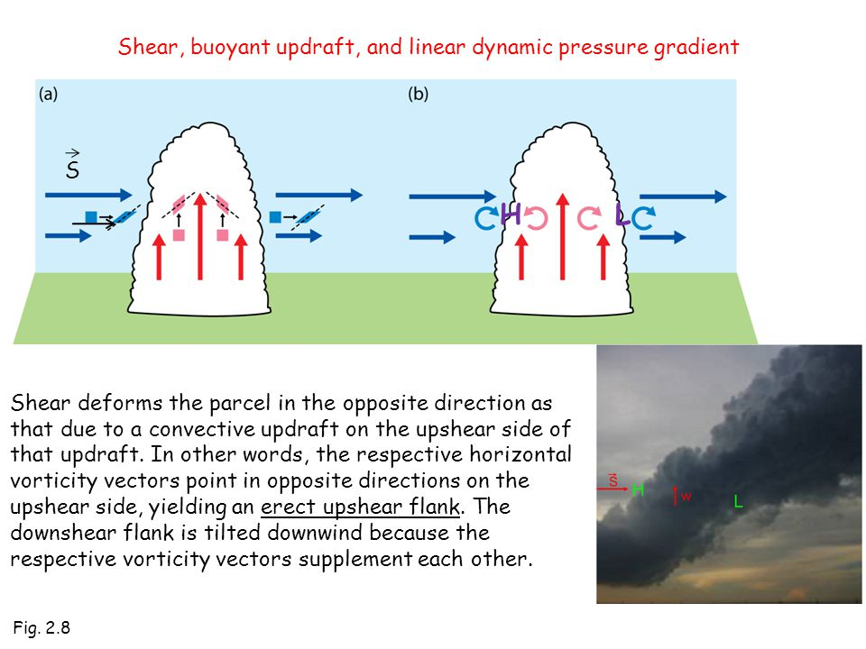 Fig. 2.8 S Shear, buoyant updraft, and linear dynamic pressure gradient HL Shear deforms the parcel in the opposite direction as that due to a convect