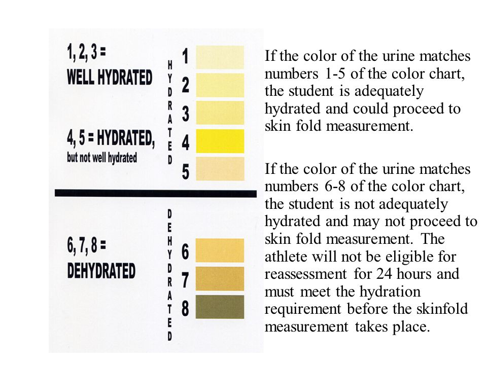 If the color of the urine matches numbers 1-5 of the color chart, the student is adequately hydrated and could proceed to skin fold measurement. If th