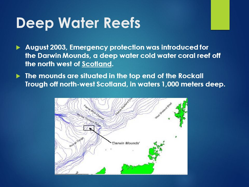 Deep Water Reefs  August 2003, Emergency protection was introduced for the Darwin Mounds, a deep water cold water coral reef off the north west of Scotland.