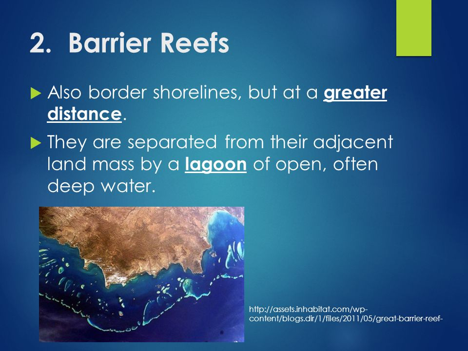 2. Barrier Reefs  Also border shorelines, but at a greater distance.