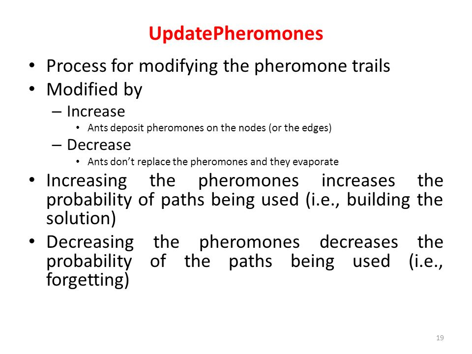 UpdatePheromones Process for modifying the pheromone trails Modified by – Increase Ants deposit pheromones on the nodes (or the edges) – Decrease Ants