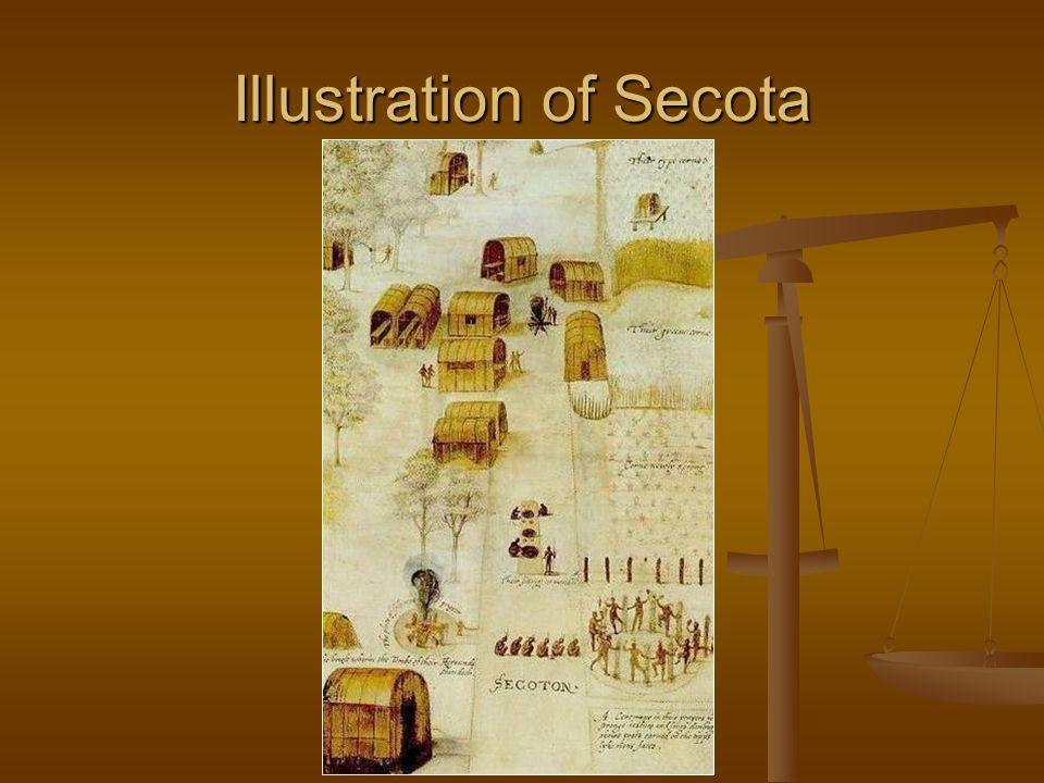 Illustration of Secota