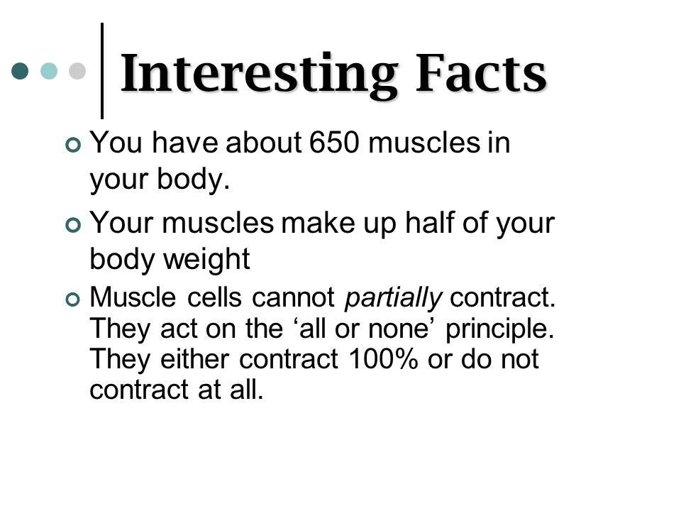Interesting Facts You have about 650 muscles in your body.