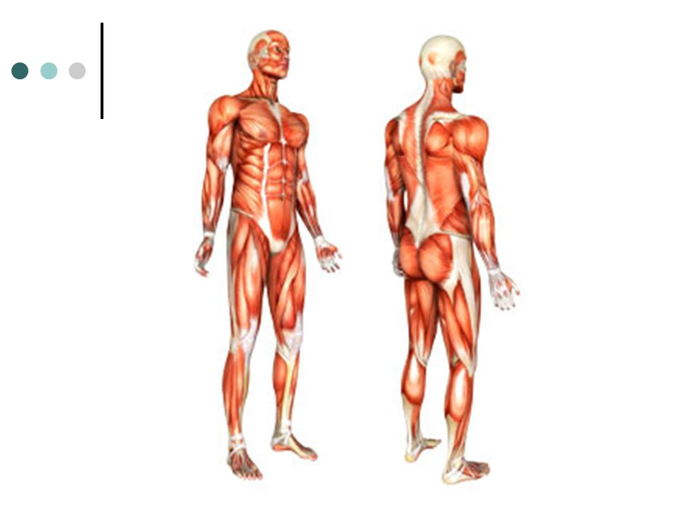 Tendons may become inflamed (tendonitis) when athletes work out in cold weather without adequate warm clothing, or without doing warm ups