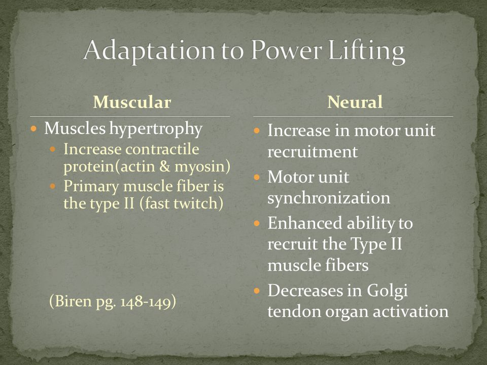 Muscular Muscles hypertrophy Increase contractile protein(actin & myosin) Primary muscle fiber is the type II (fast twitch) (Biren pg.
