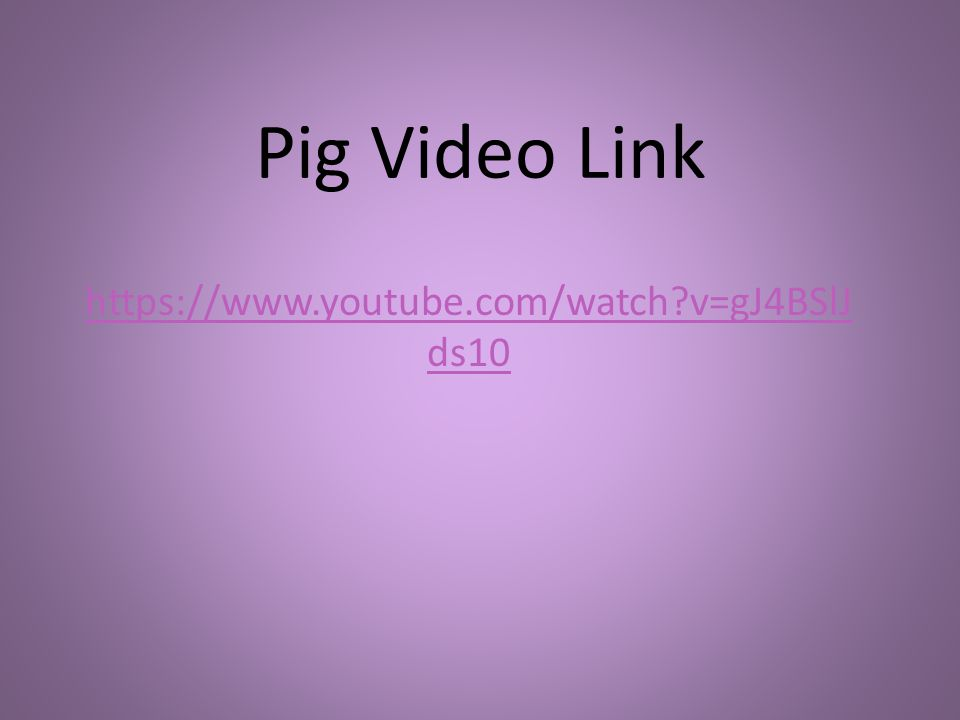 Pig Video Link https://www.youtube.com/watch v=gJ4BSlJ ds10