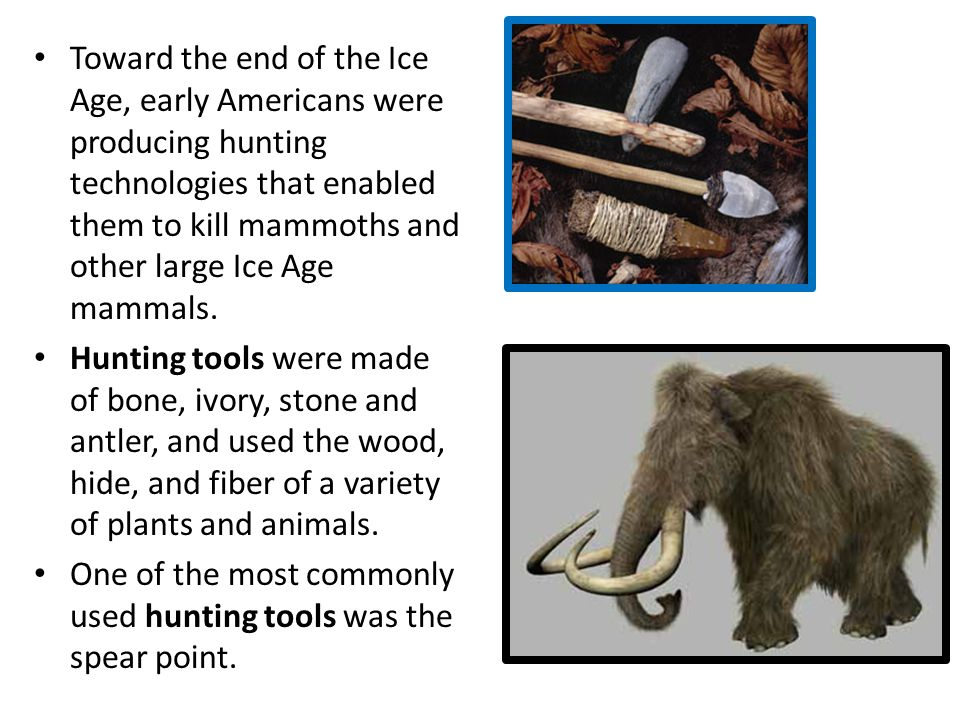 Describe how hunter-gatherers adapted to their natural environment (example – the use of simple tools to construct shelter, hunt, and make clothes) Pr