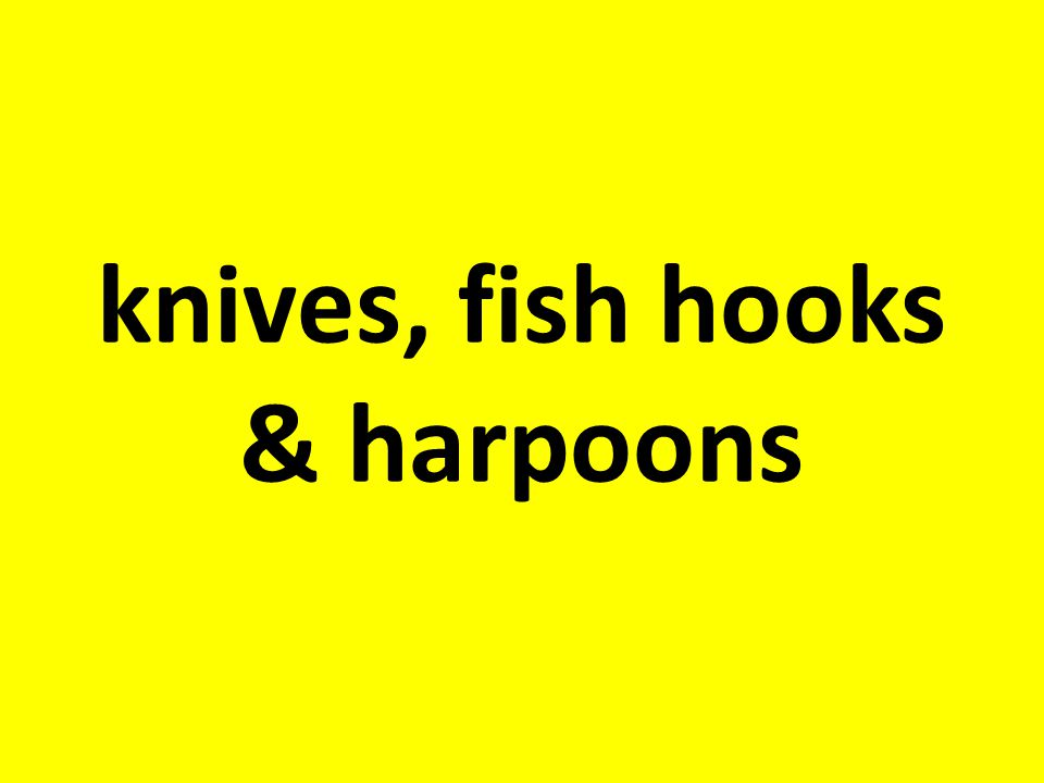 What might a hunter- gatherer tool kit include?