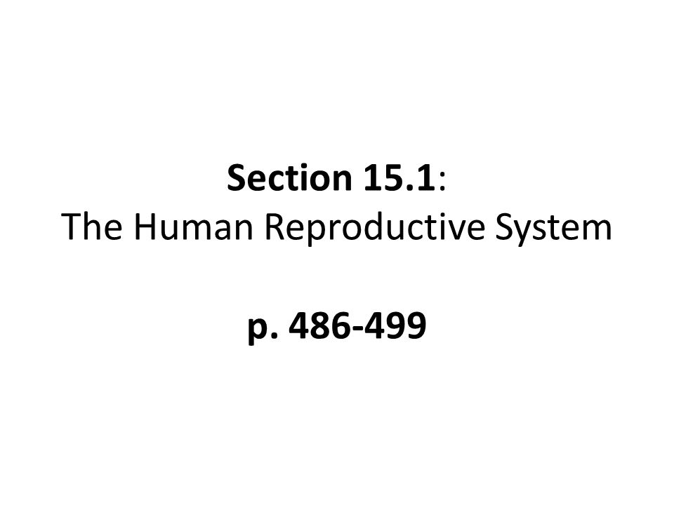 Section 15.1: The Human Reproductive System p. 486-499