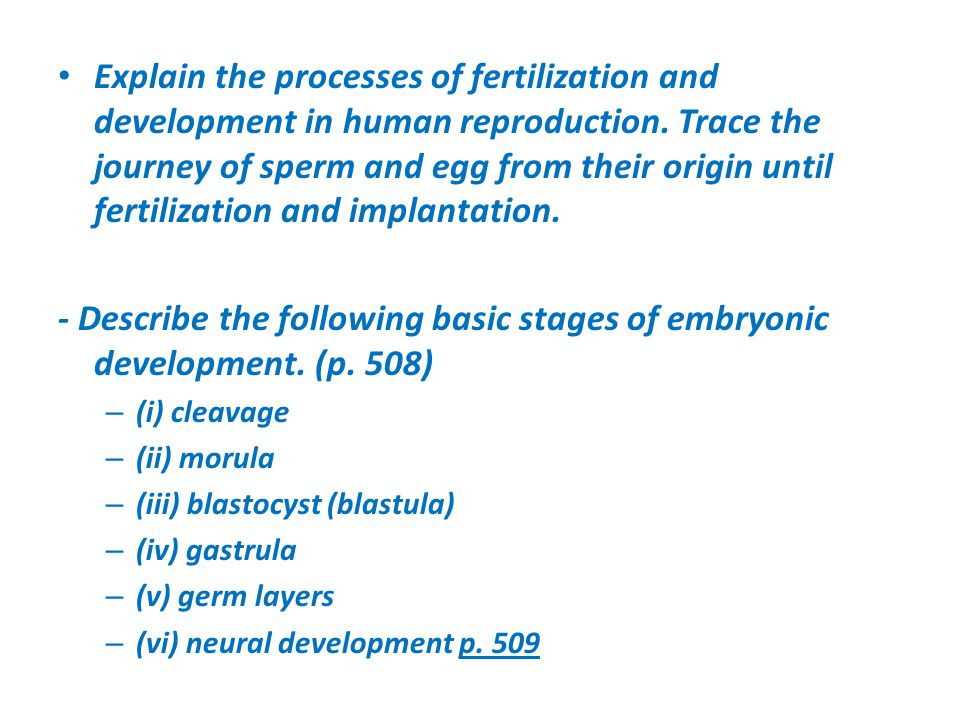 Explain the processes of fertilization and development in human reproduction. Trace the journey of sperm and egg from their origin until fertilization