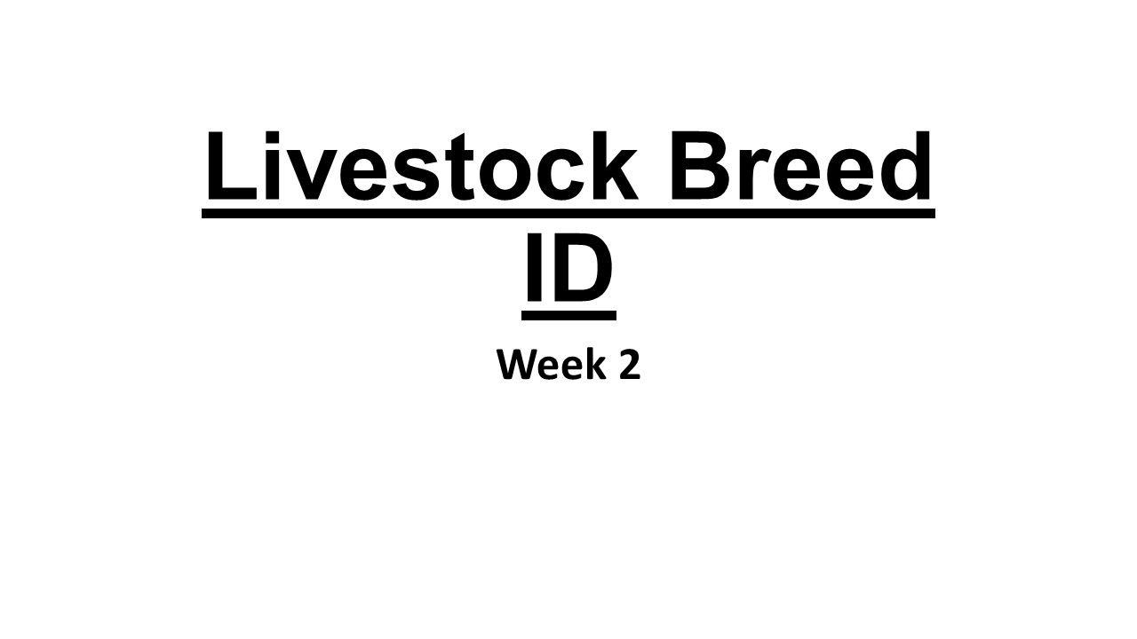 Livestock Breed ID Week 2