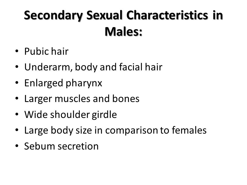 Secondary Sexual Characteristics in Males: Pubic hair Underarm, body and facial hair Enlarged pharynx Larger muscles and bones Wide shoulder girdle Large body size in comparison to females Sebum secretion