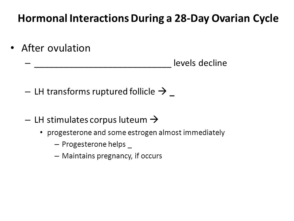 Hormonal Interactions During a 28-Day Ovarian Cycle After ovulation – ____________________________ levels decline – LH transforms ruptured follicle 