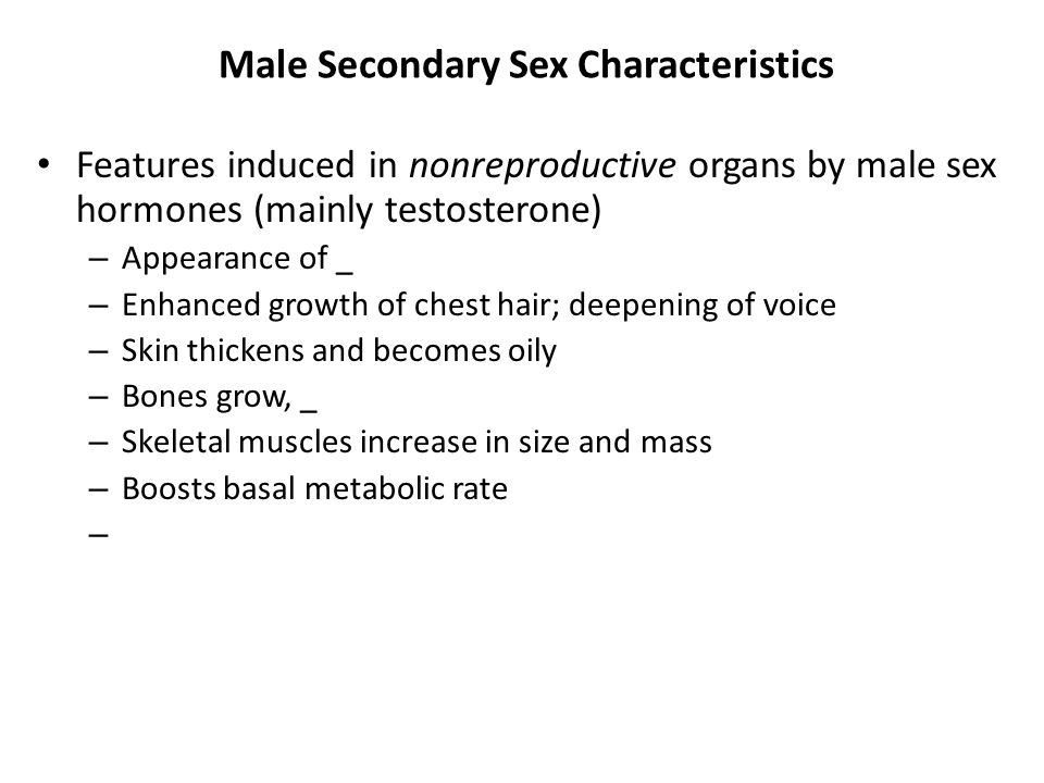 Male Secondary Sex Characteristics Features induced in nonreproductive organs by male sex hormones (mainly testosterone) – Appearance of _ – Enhanced