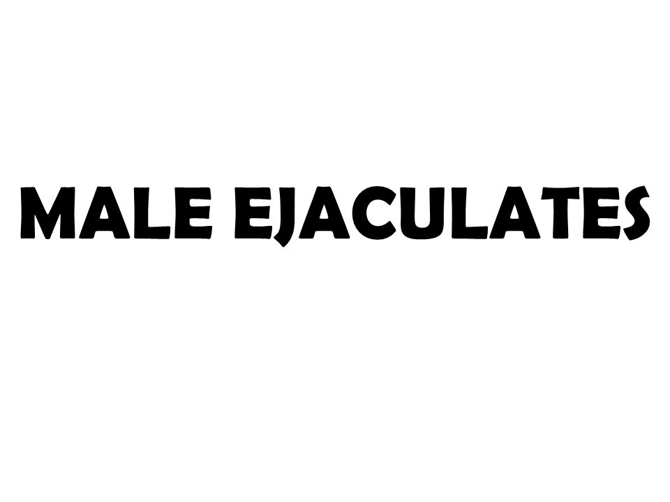 MALE EJACULATES