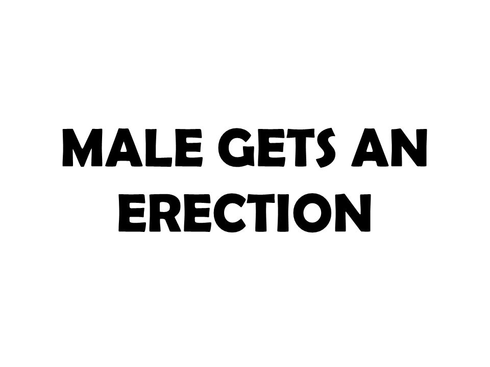 MALE GETS AN ERECTION