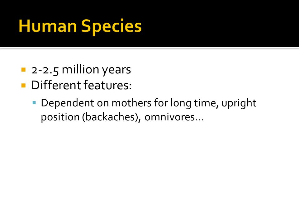  2-2.5 million years  Different features:  Dependent on mothers for long time, upright position (backaches), omnivores…