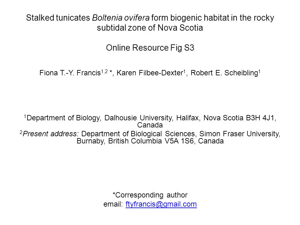 Stalked tunicates Boltenia ovifera form biogenic habitat in the rocky subtidal zone of Nova Scotia Online Resource Fig S3 Fiona T.-Y.
