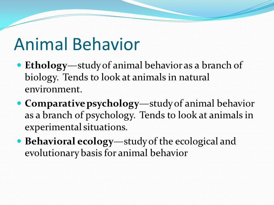 Ethology—study of animal behavior as a branch of biology. Tends to look at animals in natural environment. Comparative psychology—study of animal beha