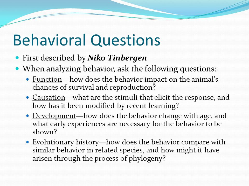 Behavioral Questions First described by Niko Tinbergen When analyzing behavior, ask the following questions: Function—how does the behavior impact on the animal s chances of survival and reproduction.