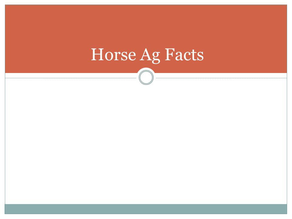 Horse Ag Facts
