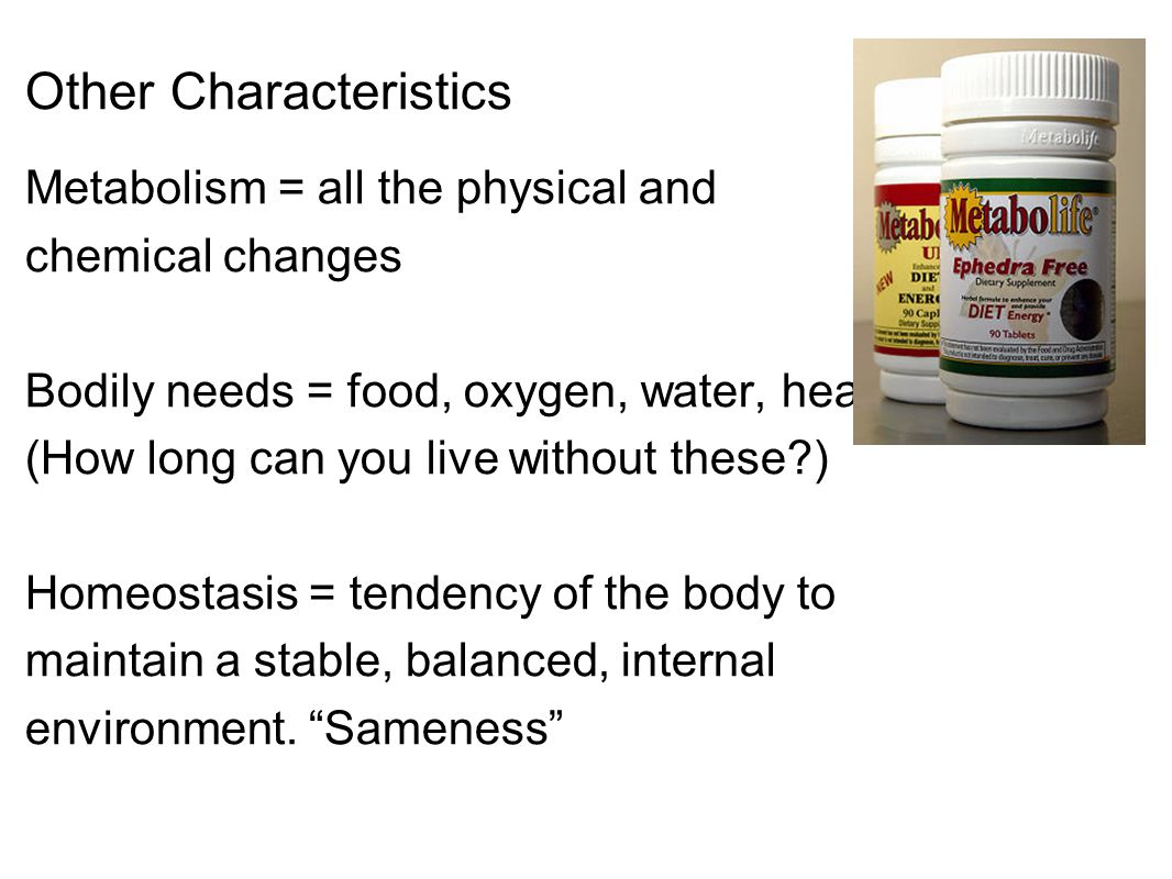 Other Characteristics Metabolism = all the physical and chemical changes Bodily needs = food, oxygen, water, heat (How long can you live without these