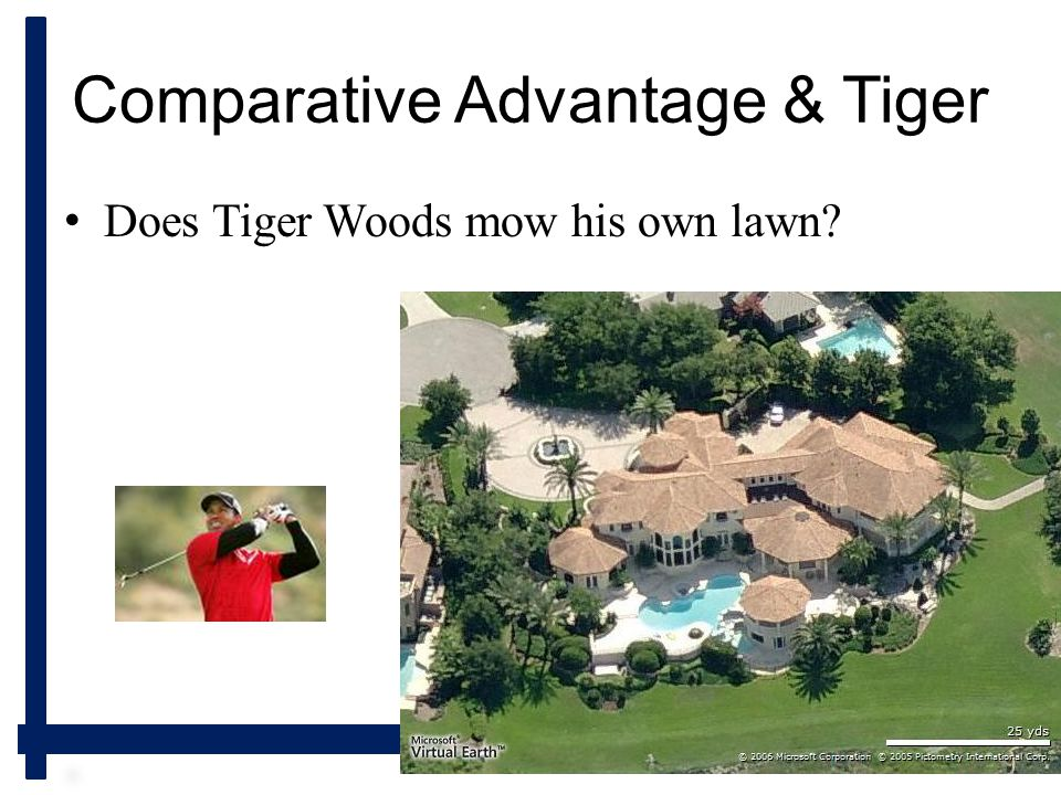 Longwood University Comparative Advantage & Tiger Does Tiger Woods mow his own lawn