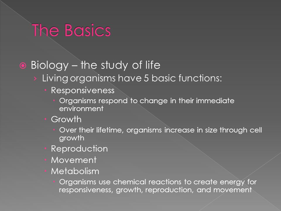  Biology – the study of life › Living organisms have 5 basic functions:  Responsiveness  Organisms respond to change in their immediate environment  Growth  Over their lifetime, organisms increase in size through cell growth  Reproduction  Movement  Metabolism  Organisms use chemical reactions to create energy for responsiveness, growth, reproduction, and movement