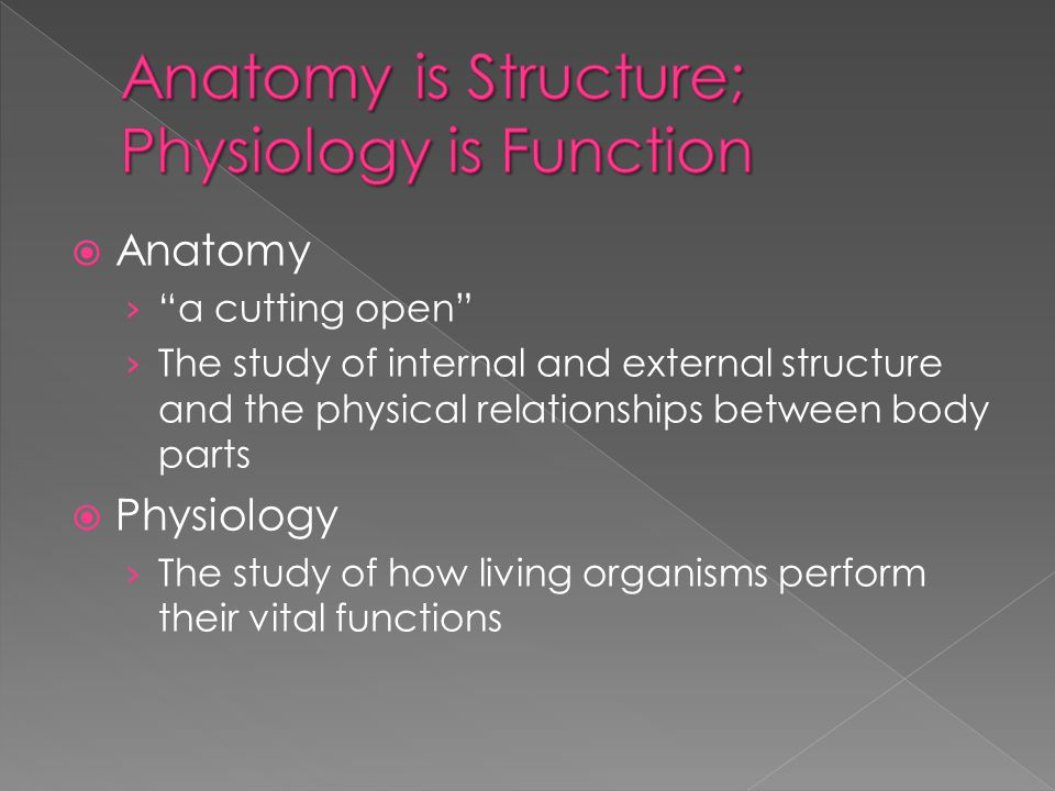  Anatomy › a cutting open › The study of internal and external structure and the physical relationships between body parts  Physiology › The study of how living organisms perform their vital functions